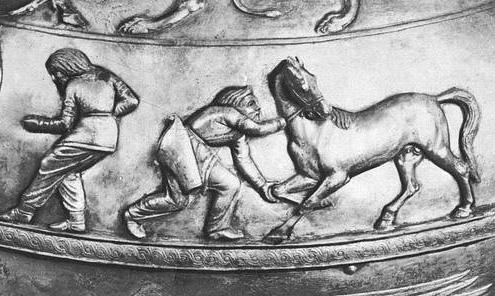 История конного спорта